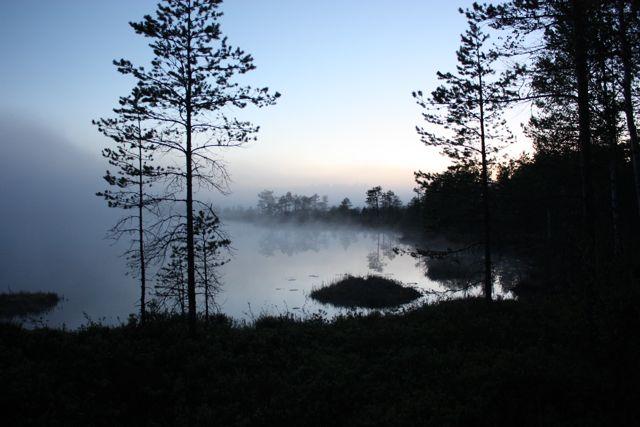 Älvorna dansar på Gäddsjön.  kl.02.00