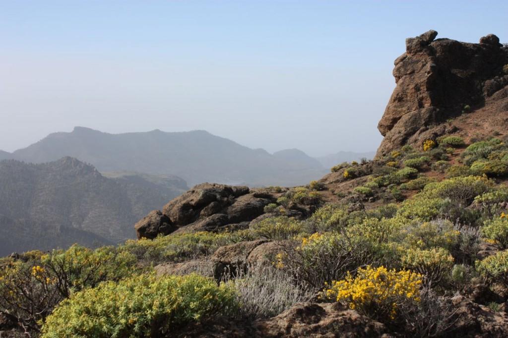 Gran Canaria som bäst.