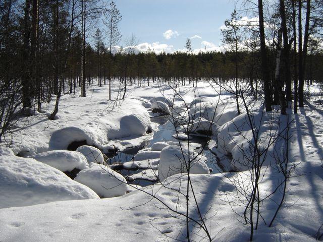 Sol på snö